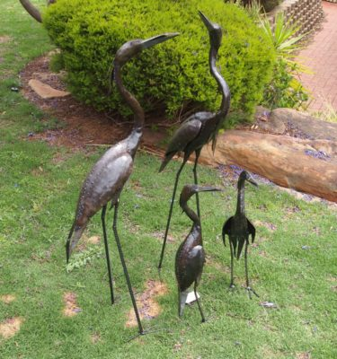 The elegant large Brolga(Australian Crane) stand on legs made from Concrete reinforcement bars. The sleek shape and main body of the sculpture is made from Recycled Oil drums giving the Brolgas a rustic edge making a beautiful Garden Feature. The Brolga Garden Ornaments are perfect for patios, Lawns and decking. The large Brolga is approximately 110cm and the small Brolga is approximately 62cm.